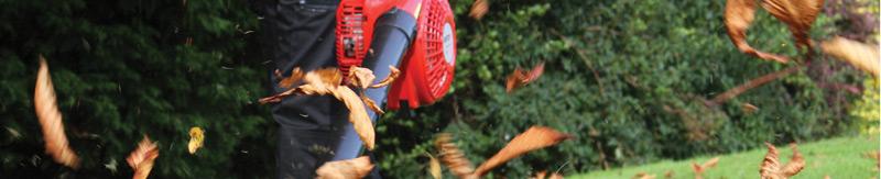 Leaf Blowers / Vacuums