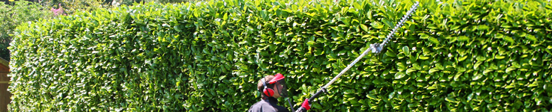 Long Reach Hedge Trimmers