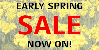 Mitox Early Spring Sale